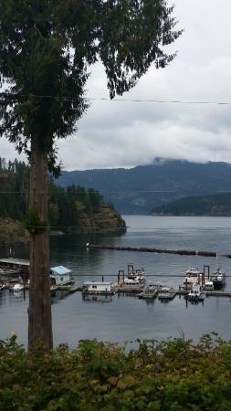 Brown's Bay Resort: salmon fishing we will go