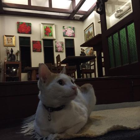 Amata Lanna Jangmuang: ホテルフロント入口
