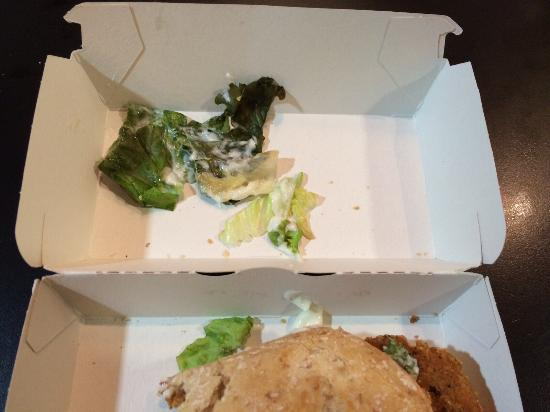 McDonald's : This is the salad in the chicken legend!! Not fresh at all, the salad had no crispness. Bad qual