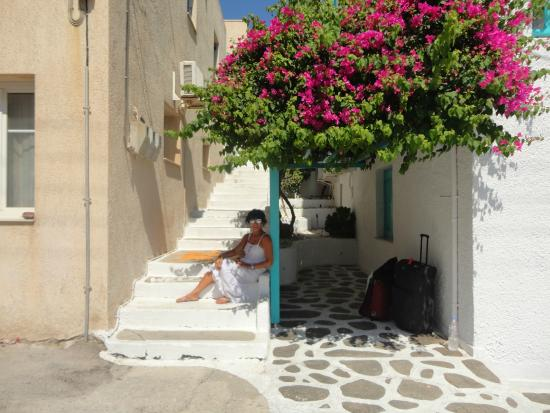Seagull Apartments: vacanza finita