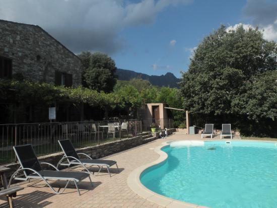 U San Martinu: Vue de la piscine