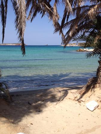 Παραλια palm bech picture of palm beach paros paros tripadvisor