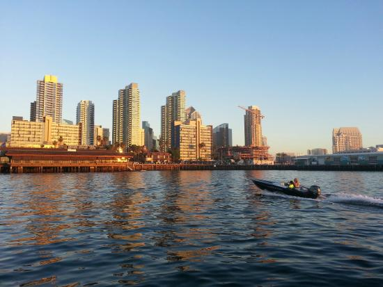 Seas The Day Speed Boat Tours Downtown San Diego Skyline Beautiful Night During