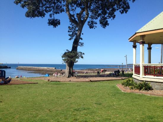 Grey Park, Shellharbour Village