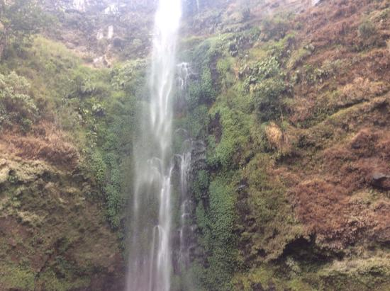 ‪Coban Rondo Waterfall‬