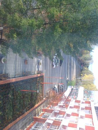 AVS Hotel: Вид из окна холла на 4 этаже