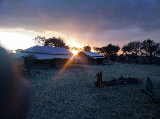 Mbugani Camps Tent Camp : Tents at Mbugani