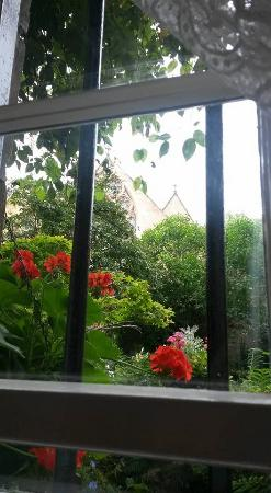 The Flower House: Lovely view from my room