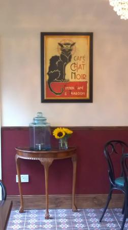 Cafe du chat noir ltd
