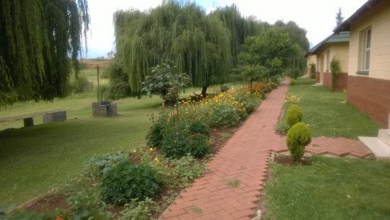 Pitseng, ليسوتو: Garden