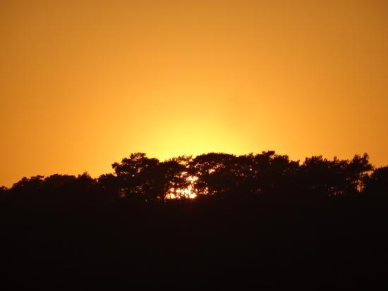 The HangOut: Sunset