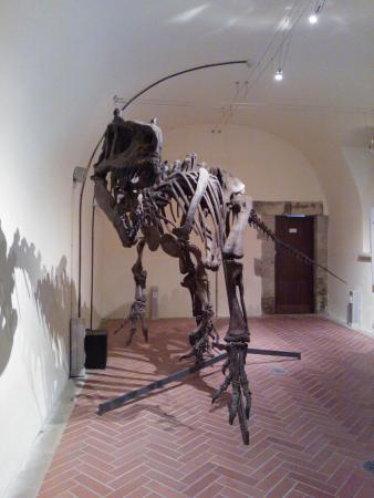 Geomuseo Monte Arci