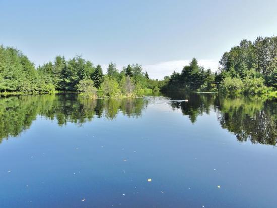 Amos, แคนาดา: L'entrée du parc