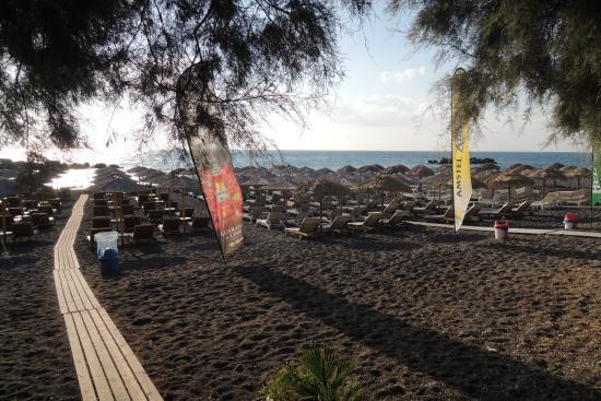 Villa Gambas : la spiaggia