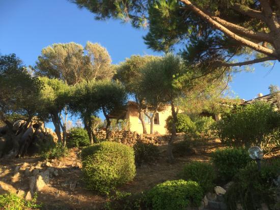 Villaggio Stazzo Pulcheddu: viste