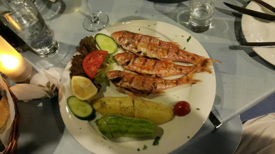 Agkyra Fish Restaurant 13 Eur Fresh Of A Day Барабулька