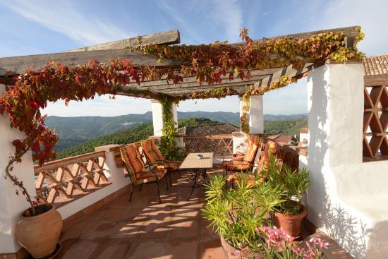 Hotel Los Castanos: los Castanos  terrace