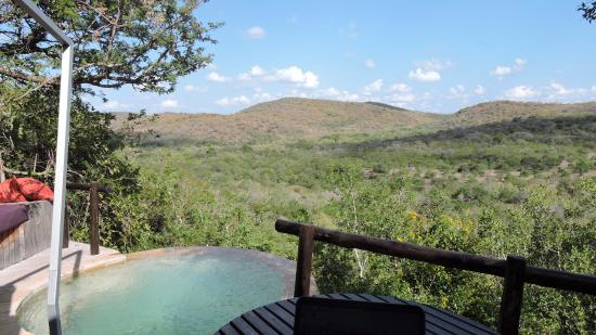 andBeyond Phinda Rock Lodge: Our private pool and our own private view.