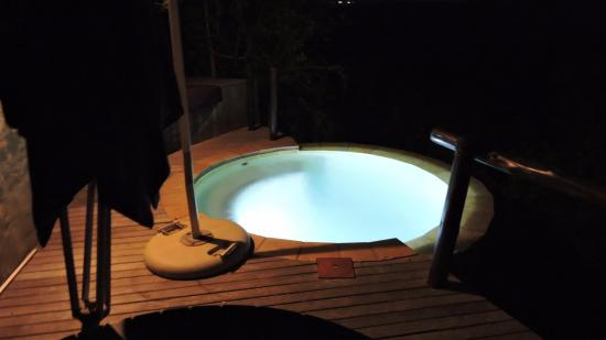andBeyond Phinda Rock Lodge: Our own private splash pool at the suite.