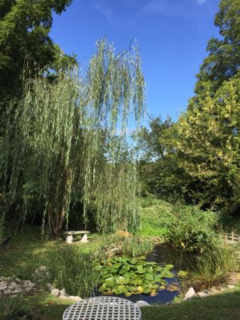 Backyard pond at Turnbridge Point