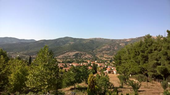 Nefeli Guest Houses: View from the Guesthouse (Summer)