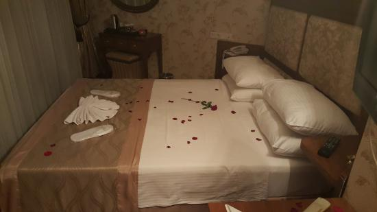 Artefes Hotel Istanbul: A bed of Roses