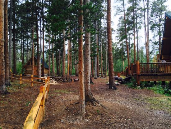 The Bear Cabin Photo