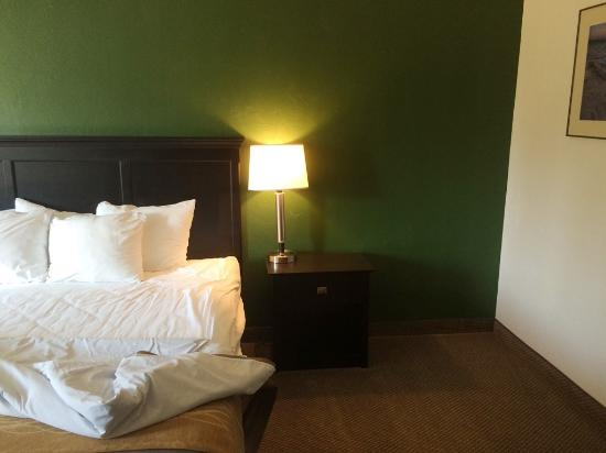 Boarders Inn and Suites by Cobblestone Munising: Hotel room