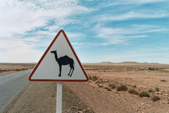 Premium Morocco Tours - Day Tours