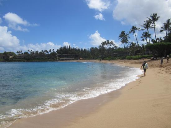 One Napili Way: Napili Bay Beach