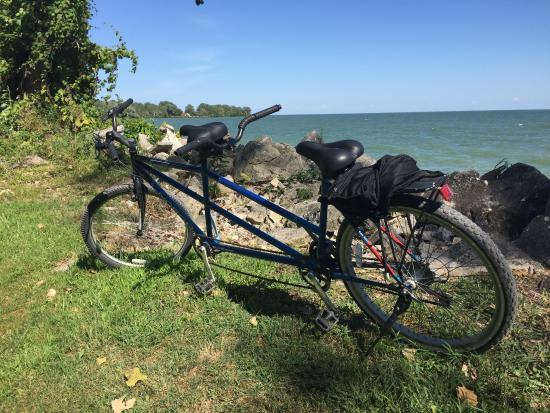 Comfortech Bike Rentals and Retail Store照片