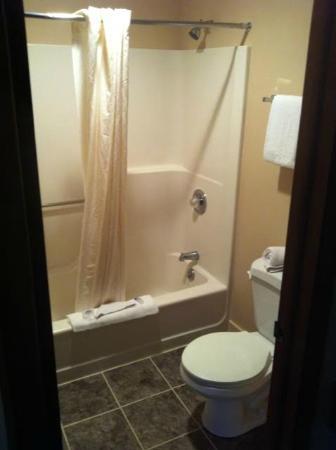 Americas Best Value Inn Plattsburgh : Bathroom