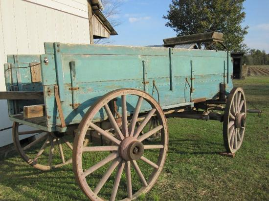 Springfield Bed and Breakfast: Old Wagon