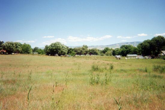 Super 8 Ellensburg : where the buffalo roam