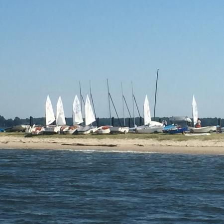 Oxford, MD: Sailing lessons as viewed from the lawn