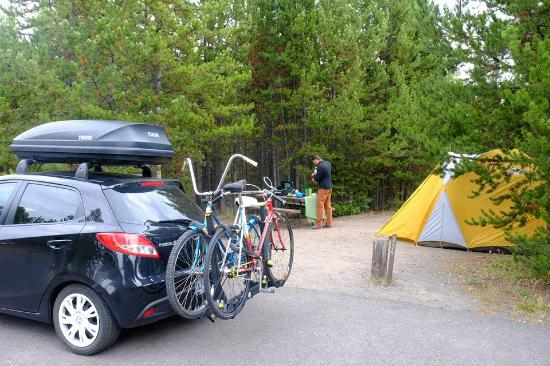 Bridge Bay Campground: our spot