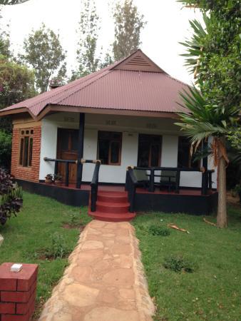 Bougainvillea Safari Lodge: My room