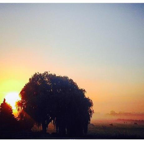 Northover Manor Hotel : sunrise