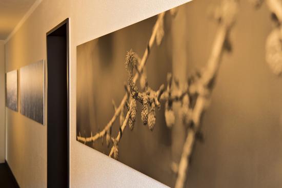 Hotel Garni Chesa Mulin: Themenbilder auf den Etagen