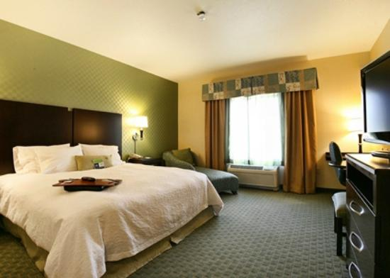 Hampton Inn Brentwood: King Room with Lounger