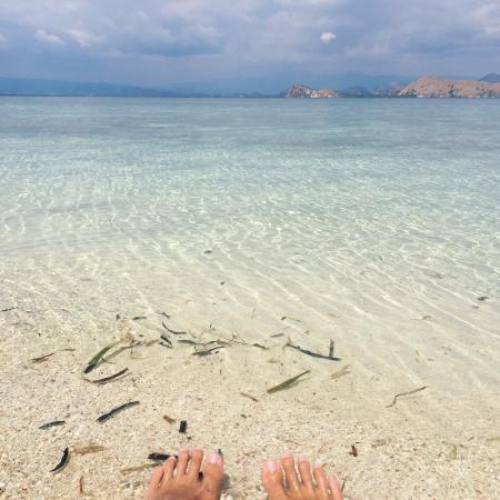 Kanawa Island Diving: Crystal clear waters and deserted beach!