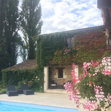 Campsegret, Frankrike: At the poolside.