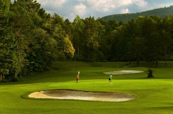 Laurel Valley Golf Course: #4 Green