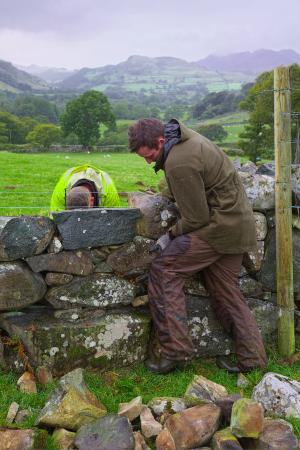 Tyddyn Mawr Farmhouse: Father and son dry stone walling in the rain at Tyddyn Mawr