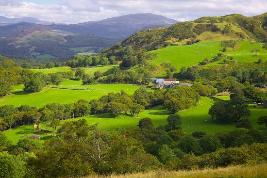 Tyddyn Mawr Farmhouse: Tyddyn Mawr from llwybr Pili Pwn (the Pony path)