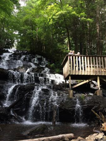 Vogel State Park: photo2.jpg