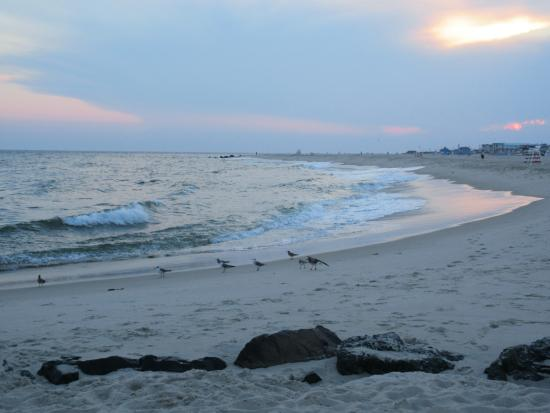 Walking along the beach near the Jetty Motel.