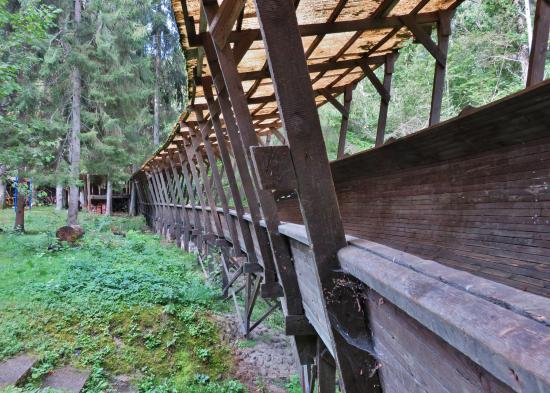Travel Jam Guided Tours: abandoned bobsleigh track