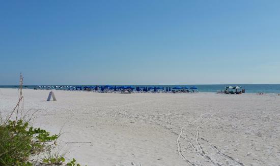 Eagle's Nest on Marco Beach: Beach