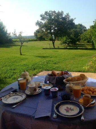 Breakfast on the beautiful terrace